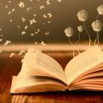 Quelle place pour le livre en ALSH ?